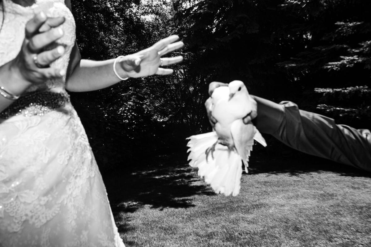 MG_3064-1_fotografia_de_casaments