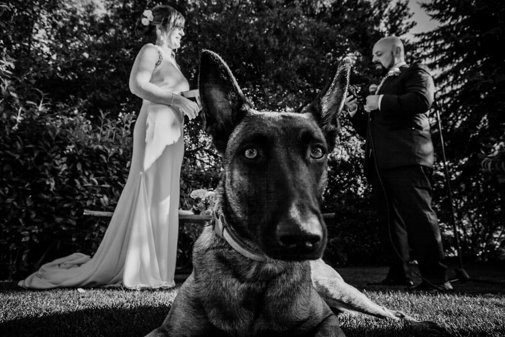 M&A-439 - Reportatge Casament Mas el Martí