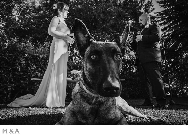 Casament Mas el Martí